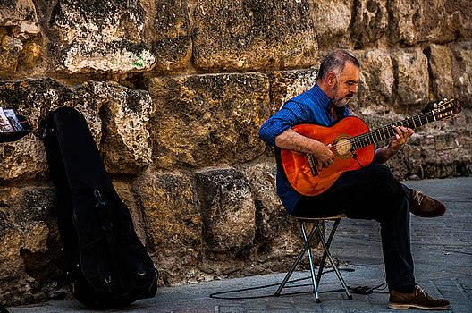 Sevilla Street Musician I by Dawn Wayand