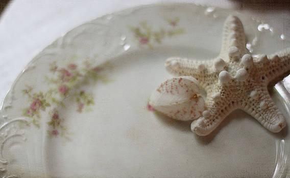 Shabby and Starfish by Sherry Hahn