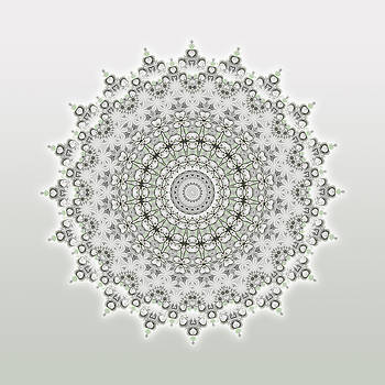 Shades Of Gray FLOWERS MANDALA by EDDA Froehlich