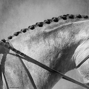 Michelle Wrighton - Shades of Grey Fine Art Horse Photography