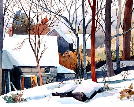 Shades of Winter by Art Scholz