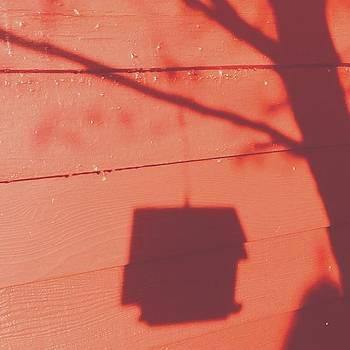 #shadow #birdhouse #bird #tree #red by Pete Michaud