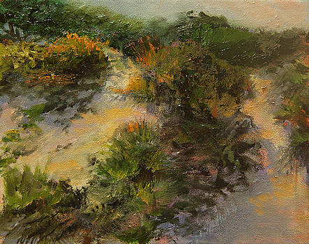 Shadow On The Dunes by Jill Holt