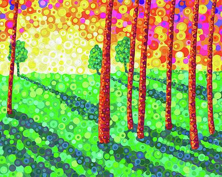 Shadowlands by Jennifer Allison