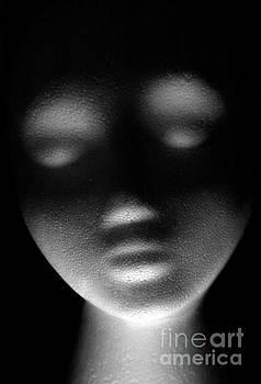 Shadows by Dan Holm