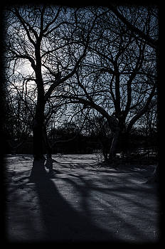 Shadows in January Snow by Miguel Winterpacht