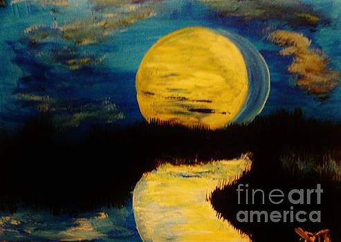 Shadows in the Moon by Marie Bulger