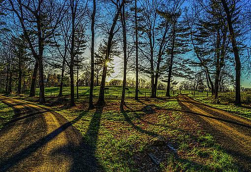 Shadows  by Jeffrey Friedkin