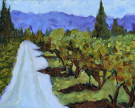 Shadows on the Drive by Mary Beth Harrison