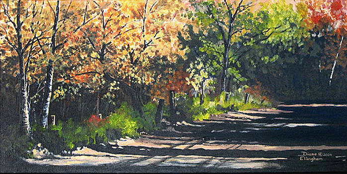 Shady Lane by Diane Ellingham