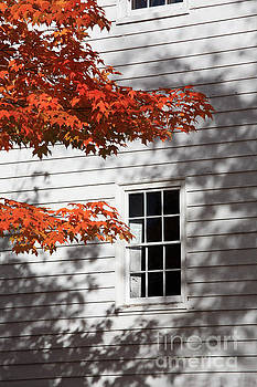 Shaker building autumn leaves by Bryan Attewell
