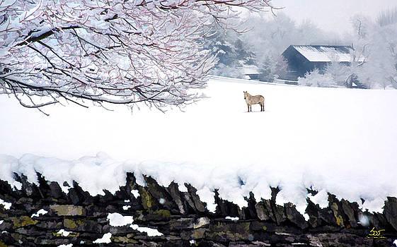 Sam Davis Johnson - Shaker Horse in Winter
