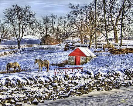 Sam Davis Johnson - Shaker Red Door Winter