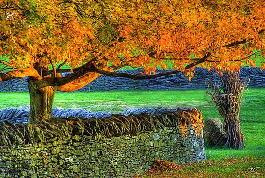 Sam Davis Johnson - Shaker Stone Fence 1