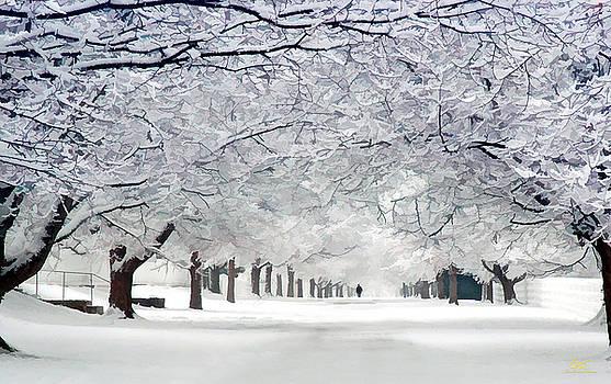 Sam Davis Johnson - Shaker Winter Walkway