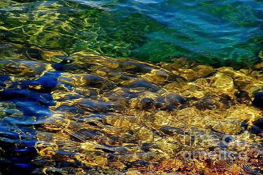 Shallow Water by Andrea Kollo