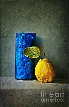 Shape and Colour by Binka Kirova