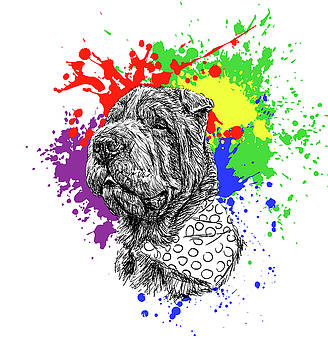 Shar Pei @sharpeifreddie by ZileArt