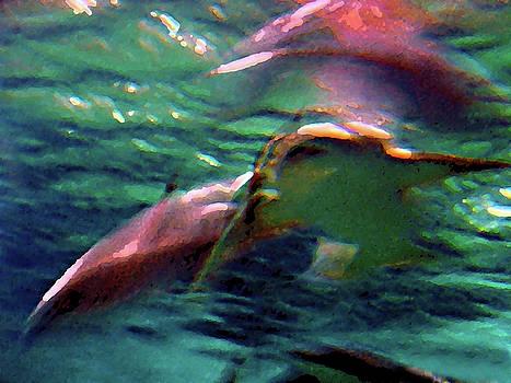 Shark Abstract by Steve Karol