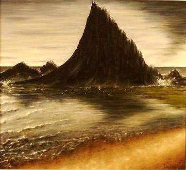 Shark Rock - Half Moon Bay CA. by Kevin Davidson