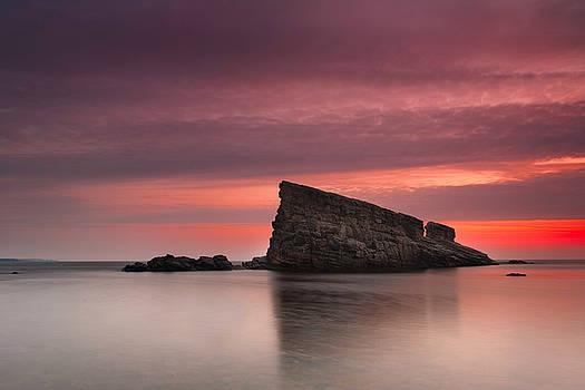 Shark Rock by Evgeni Dinev