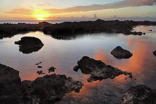 Shark's Cove Sunset by Seil Frary