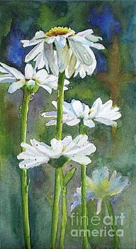 Shasta Daisies by Bonnie Rinier