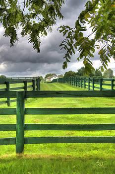 Sam Davis Johnson - Shawanee Fences