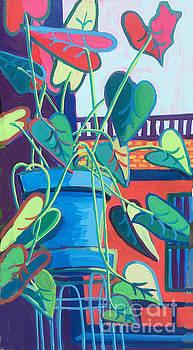 Shawsheen Ivy by Debra Bretton Robinson