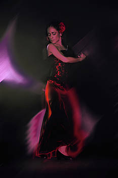 She Dances for Love by Jeff Burgess