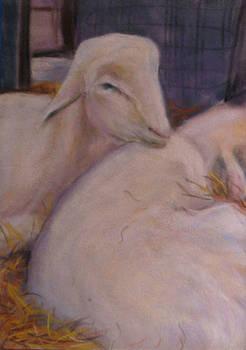Shear Buddies by Wendie Thompson
