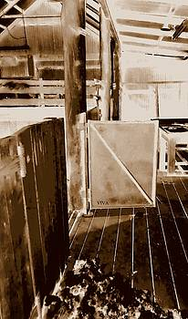 Shearing Shed Australia by VIVA Anderson