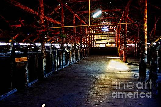 Shearing shed from a bygone era by Blair Stuart