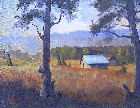 Shed study by Curt Curt