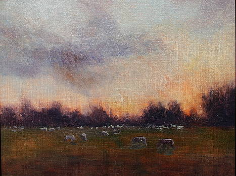 Sheep at Dusk by Jan Frazier