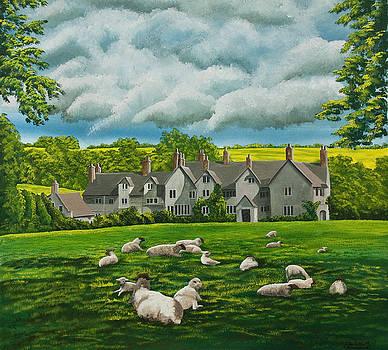 Charlotte Blanchard - Sheep in Repose