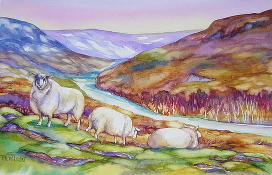 Peggy Wilson - Sheep in The Highlands