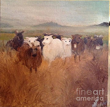 Sheeps in the fog by Randi Veiberg