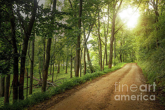 Sheffield Mine Road by Tim Wemple