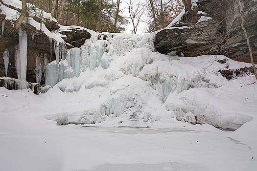 Sheldon Reynolds Encased In Ice by Gene Walls