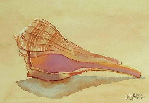 Shell 5 by Judy Mercer