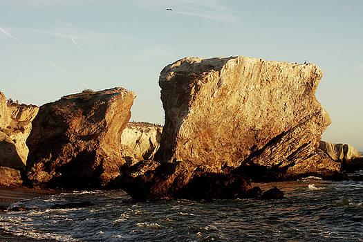 Art Block Collections - Shell Beach Cove