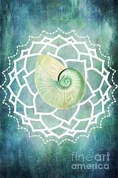 Shell Chakra Blue by Kelley Freel-Ebner