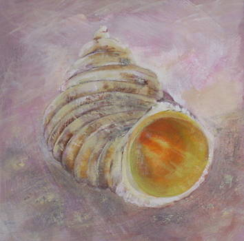 Shell No. 3 by Eve Corin