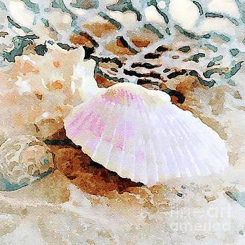 Shells by Betty LaRue