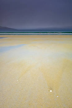Shells on Luskentyre beach, Harris by Neil Alexander