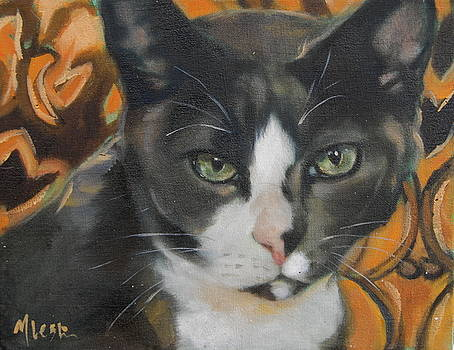 Shelter Cat by Mary Leslie