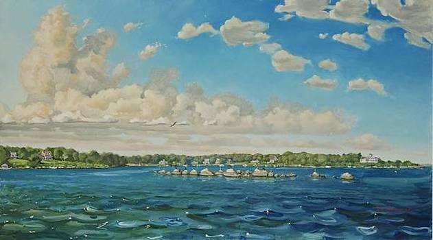 Shelter Harbor Rocks by David Johnson