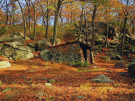 Shelter in Harriman for AT Hikers by Raymond Salani III