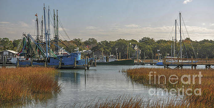 Dale Powell - Shem Creek Island Crawl